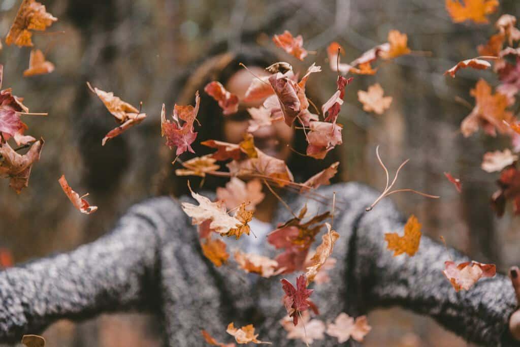 gezonde herfst