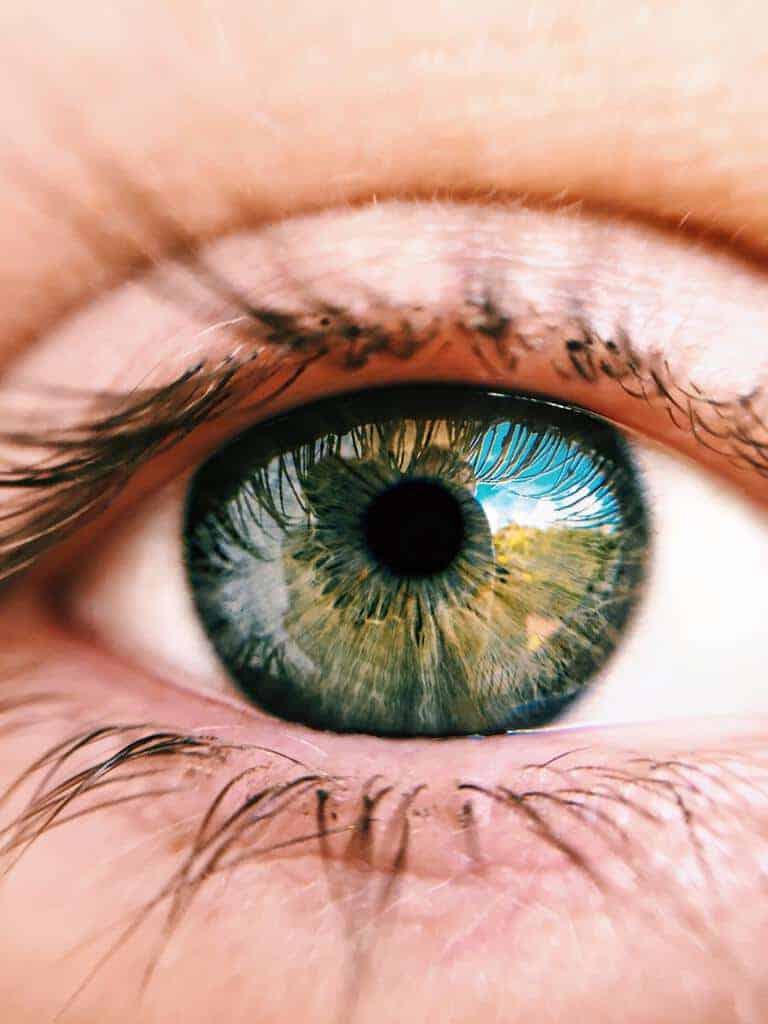 oogbal