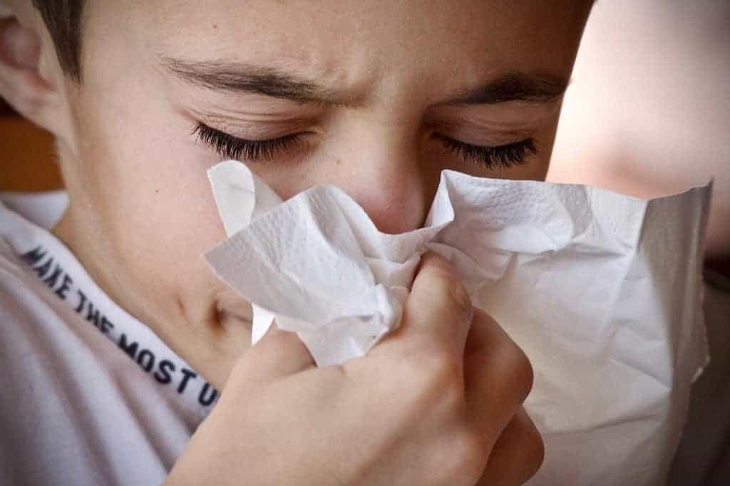 allergie niezen