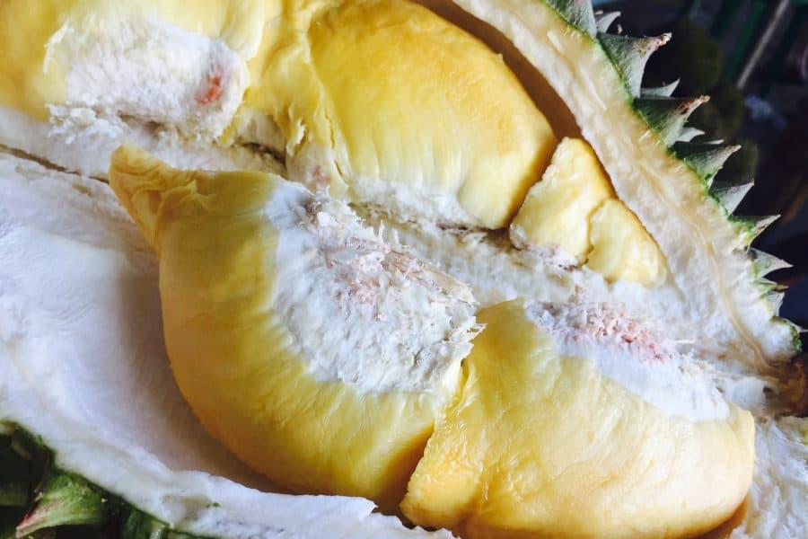 jackfruit vrucht