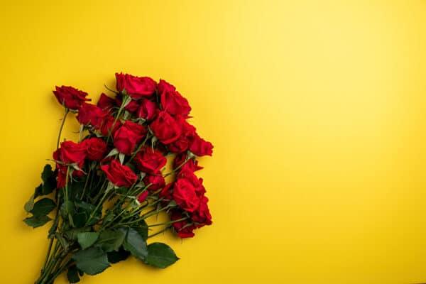 rozen 1