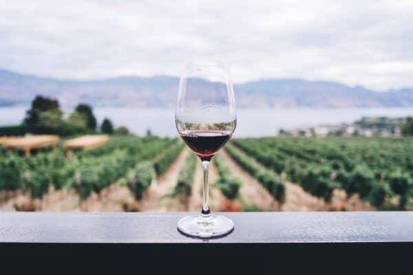 welke wijn