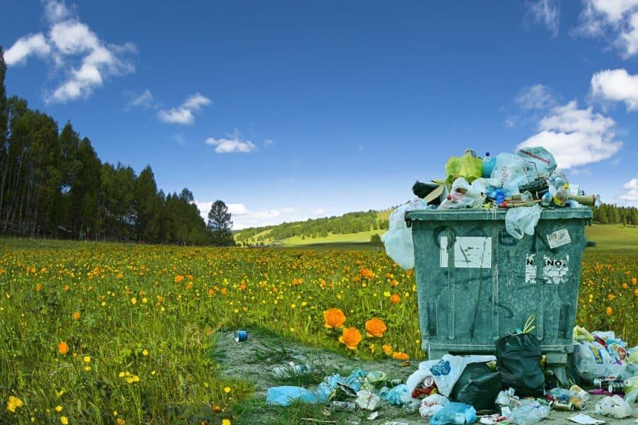 milieu verkiezingen